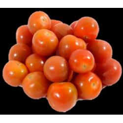 Tomate Cherry Band x Lb