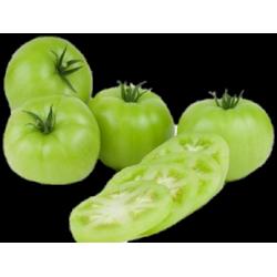 Tomate Milano Verde x Lb