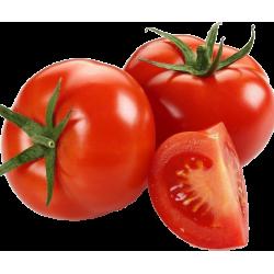 Tomate Milano Rojo x Lb